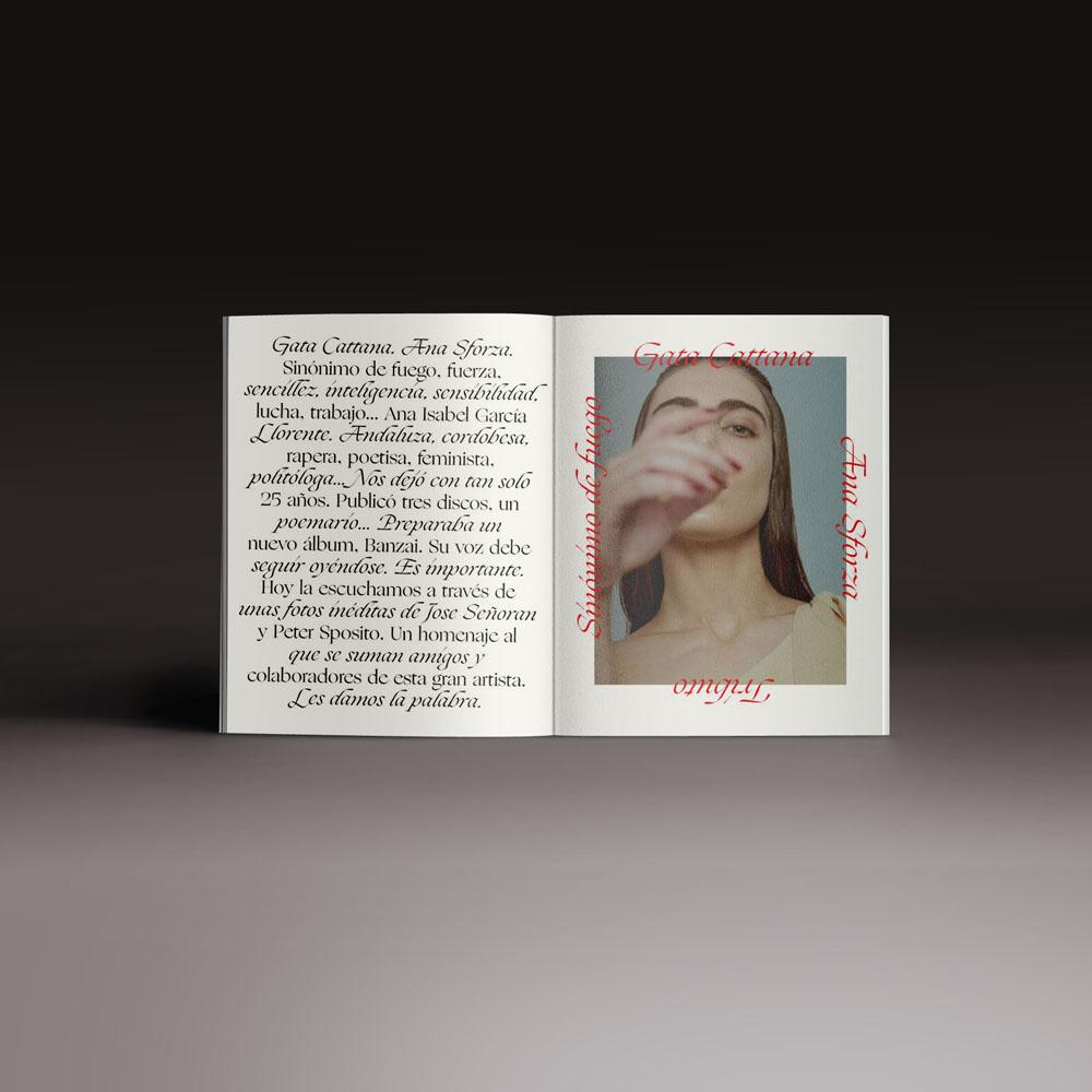 Neo2 revista 162. doble página de Gata Catana