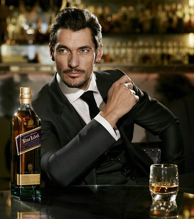 DAVID GANDY walks with JOHNNIE