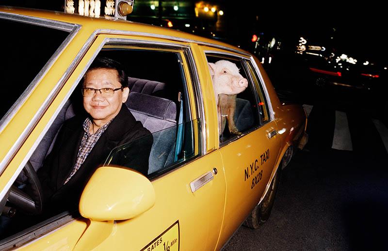 591110b6e Año del Cerdo. Celebra el año nuevo Chino con Gucci