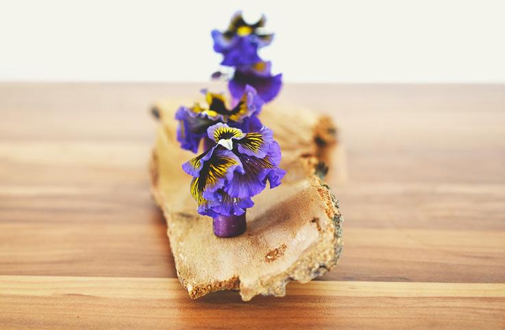 Marisa Benjamim - Es tiempo de alimentarse de flores