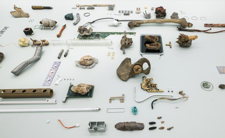 Nicolás Lamas - Oscuro Museo del Antropoceno