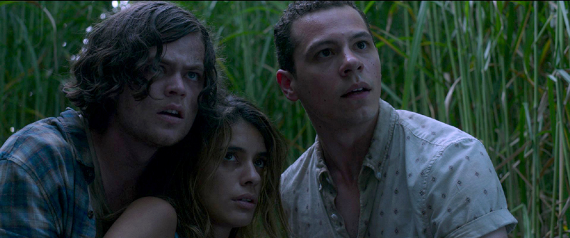 En la hierba alta, la nueva adaptación de Stephen King