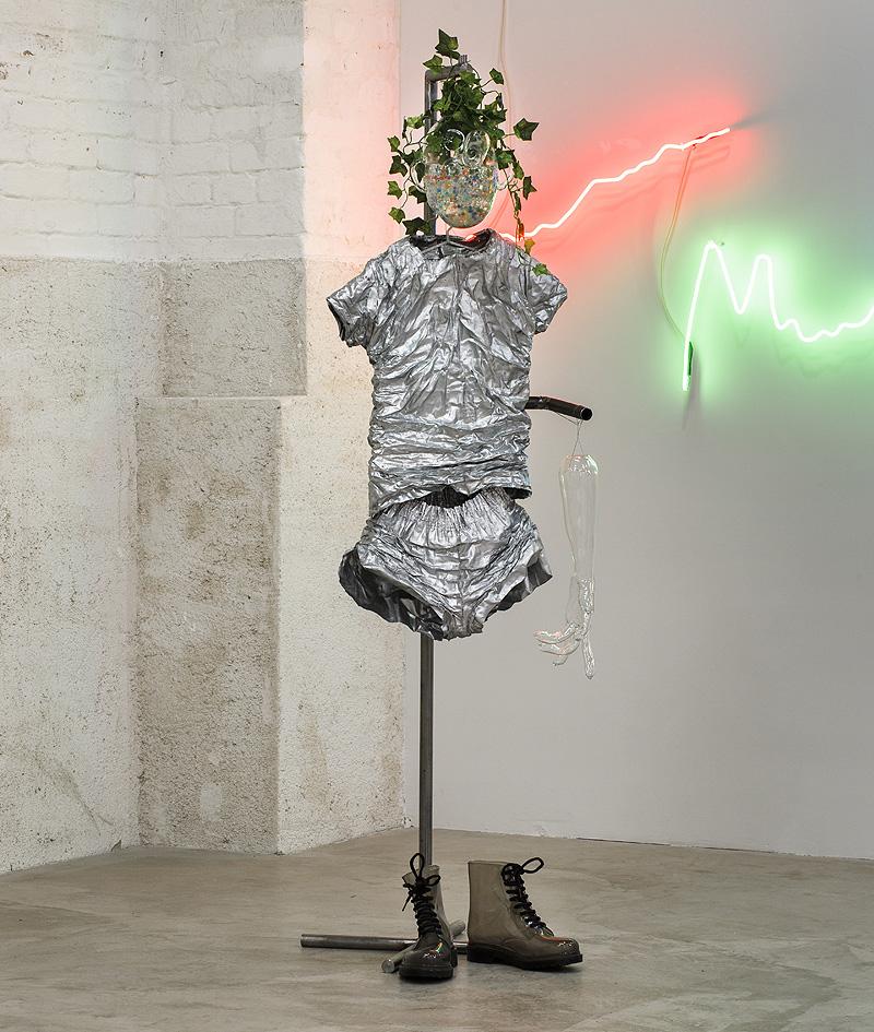 Saelia Aparicio - Planta, alzado, raíz