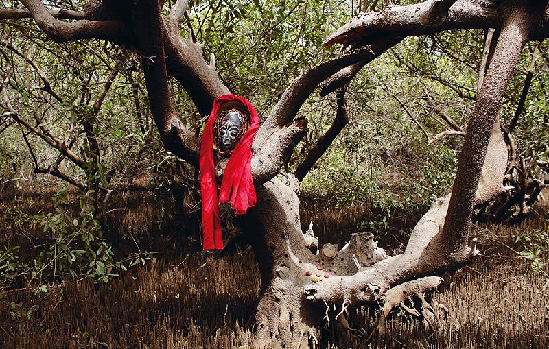 Joven fotografía africana