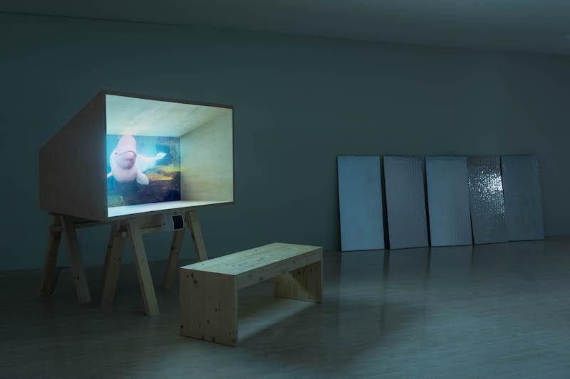 Joan Jonas, 'Moving Off the Land II' expo en el TBA21