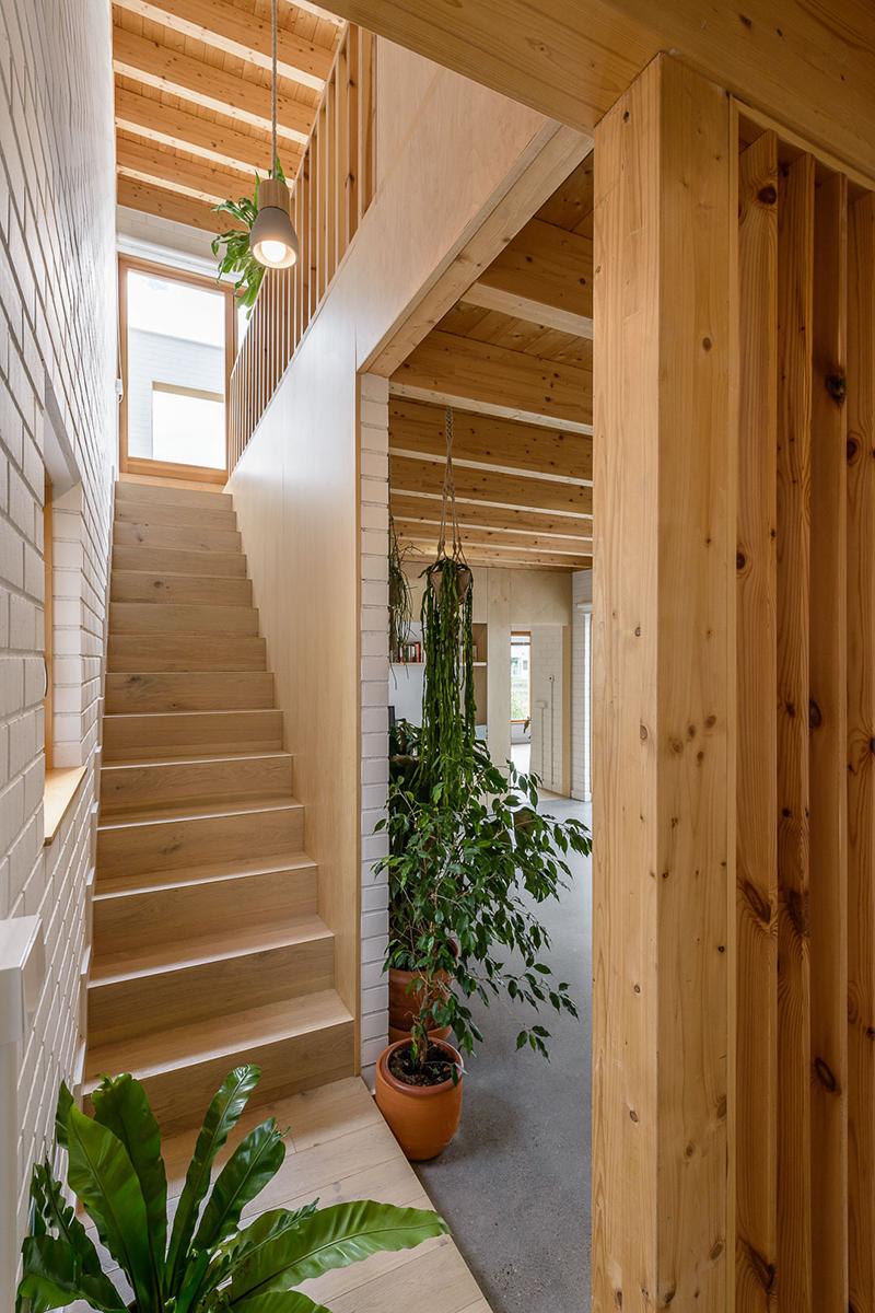 Casa SD, el oasis de Escribano Rosique Arquitectos