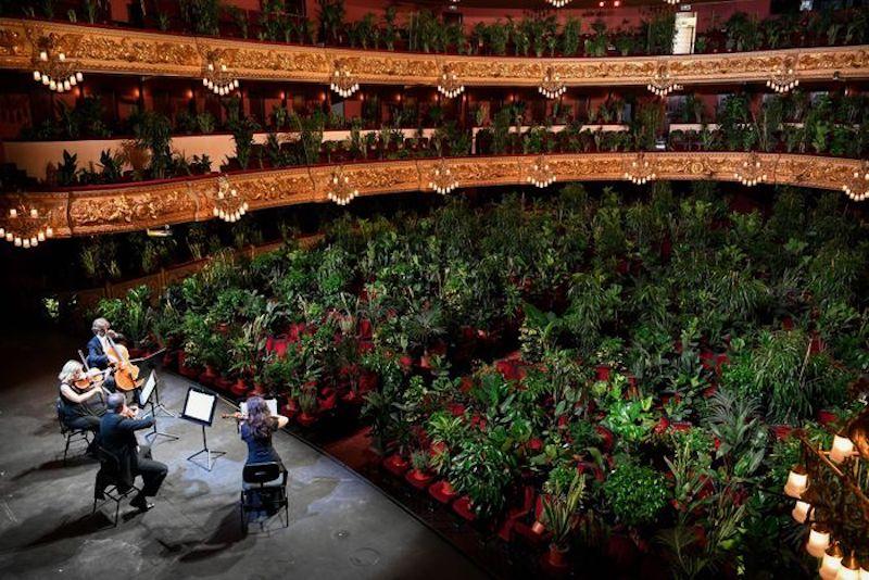 'Concierto para el Bioceno' de Eugenio Ampudia en el Liceu