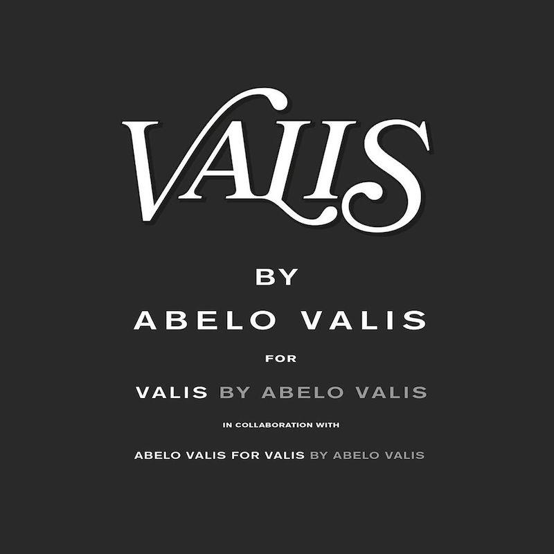 Descubriendo al artista multidisciplinar Abelo Valis