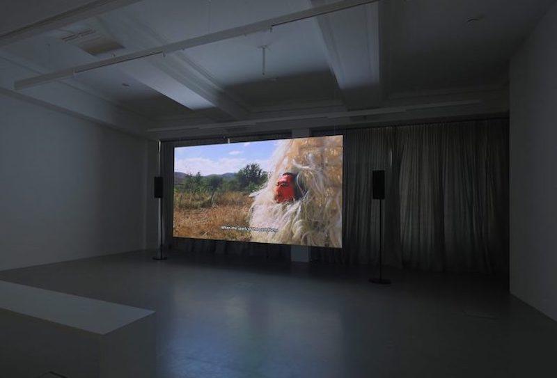 11ª Bienal de Arte Contemporáneo de Berlín, parte II