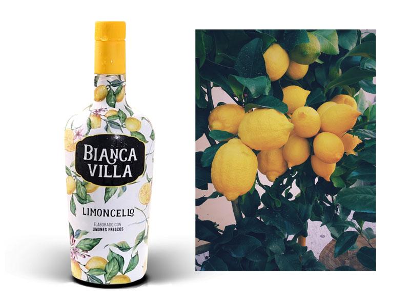 Bianca Villa: Limoncello español con el toque navarro