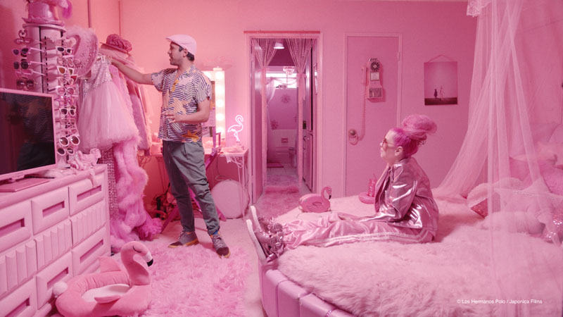 The mystery of the pink flamingo, cultura kitsch