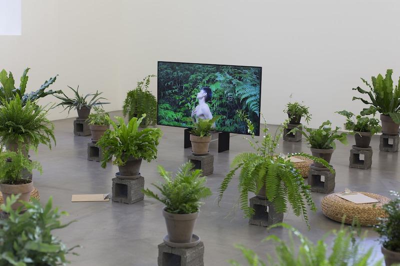 Ficciones ecológicas en el Museo Migros de Zúrich