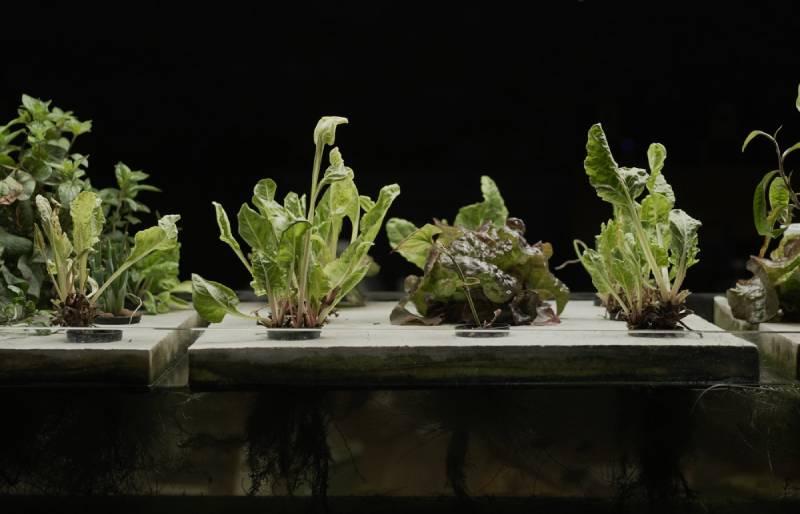 Fab Lab Barcelona revoluciona el ecosistema alimentario