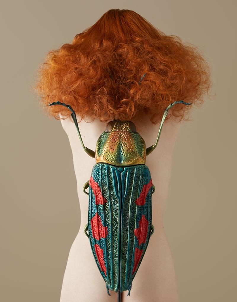 Buzzing o la moda de los insectos