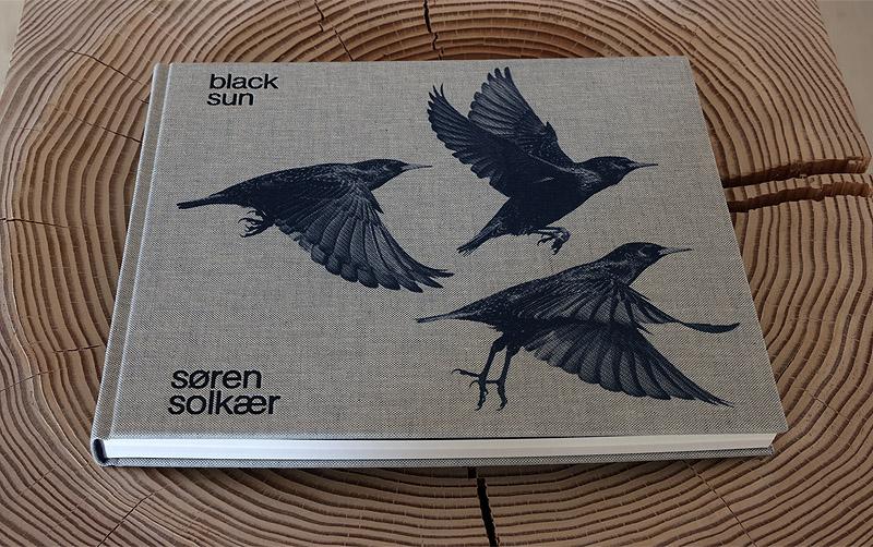Black Sun de Søren Solkær. La danza de los estorninos.