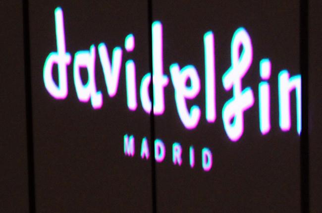 DAVIDELFIN 2013