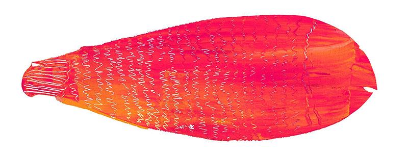 Lluritu: la marisquería desenfadada de Gràcia