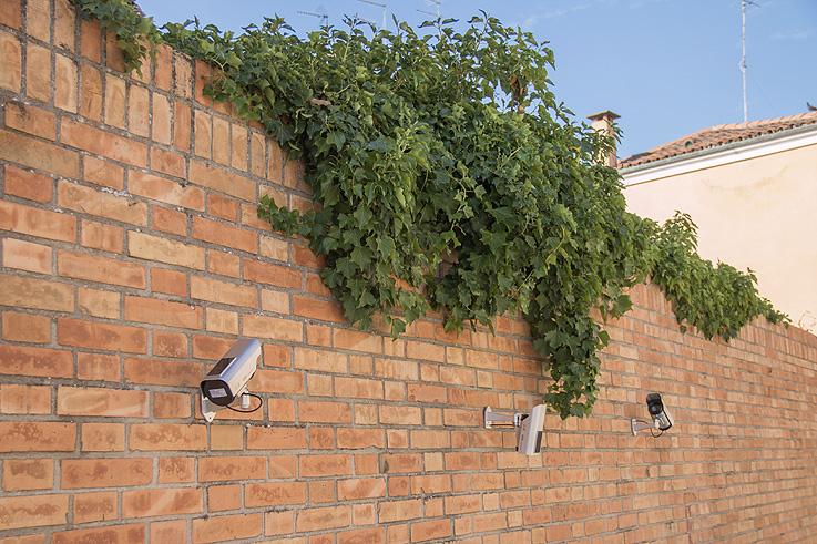 elisava_bienal_venecia_2 Octavi Serra en la Bienal de Venecia