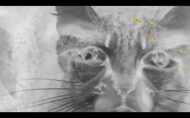 Exclusiva: Nuevo Videoclip de Evripidis